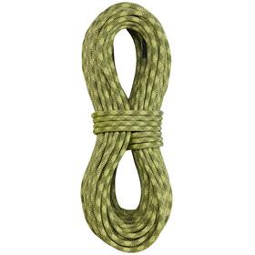 Edelrid Python Corda arrampicata 10mm 50m verde